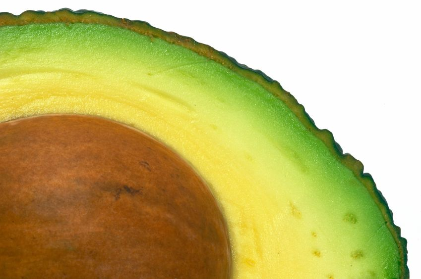 avocado-closeup
