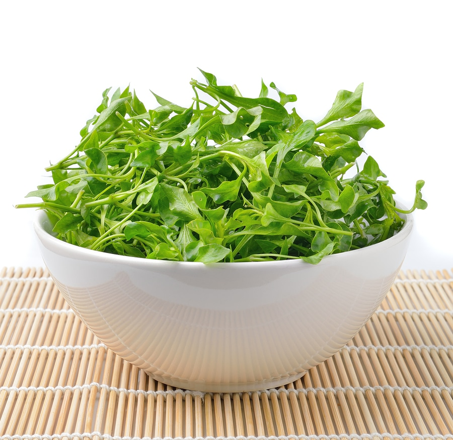watercress3