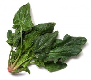 Spinach1 (1)